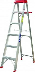 Social rank is like climbing a ladder
