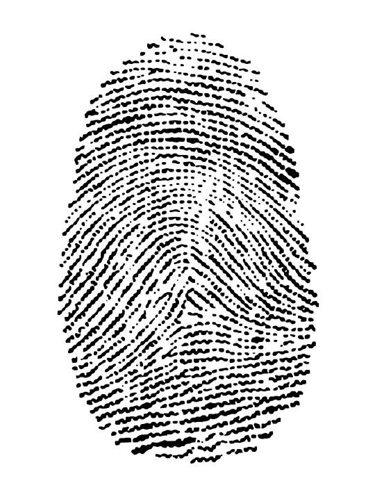 Fingerprint -- unique content