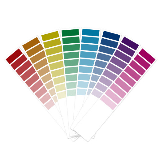 picking a color scheme for your website
