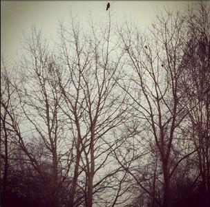 sepia instagram photo
